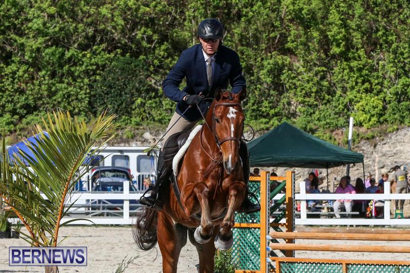 Horse-Show-Bermuda-December-13-2014-32
