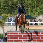 Horse Show Bermuda, December 13 2014-33
