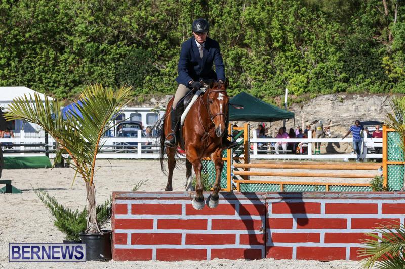Horse-Show-Bermuda-December-13-2014-33