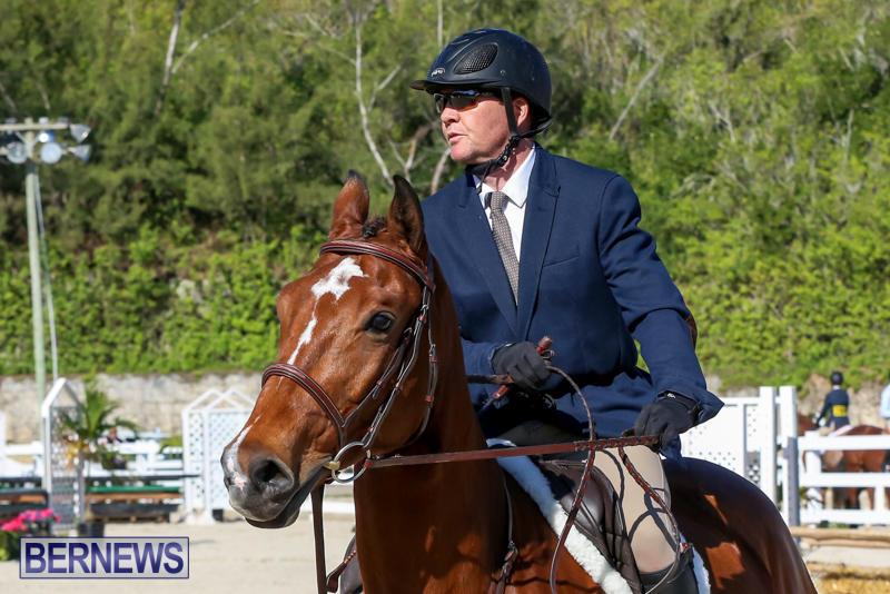 Horse-Show-Bermuda-December-13-2014-36