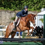 Horse Show Bermuda, December 13 2014-37