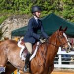 Horse Show Bermuda, December 13 2014-38