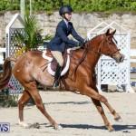 Horse Show Bermuda, December 13 2014-39