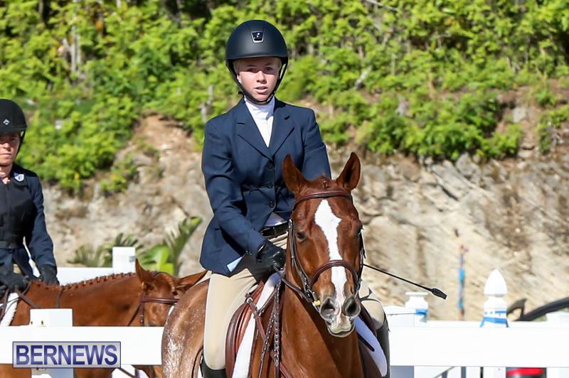 Horse-Show-Bermuda-December-13-2014-41