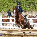 Horse Show Bermuda, December 13 2014-42