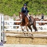 Horse Show Bermuda, December 13 2014-43