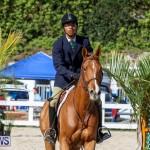 Horse Show Bermuda, December 13 2014-46