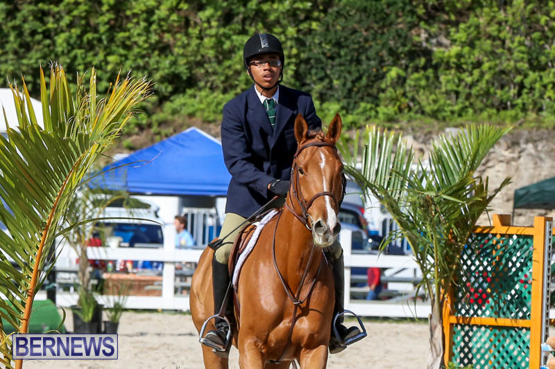Horse-Show-Bermuda-December-13-2014-46