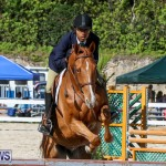 Horse Show Bermuda, December 13 2014-47