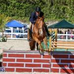 Horse Show Bermuda, December 13 2014-48
