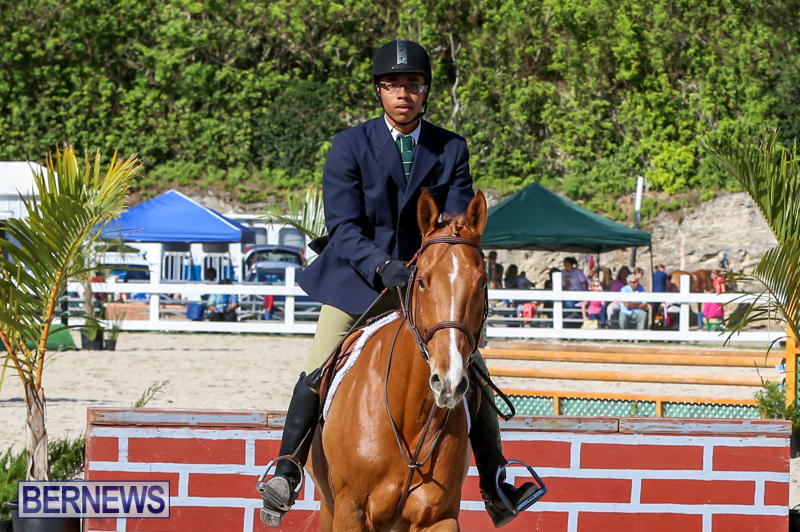 Horse-Show-Bermuda-December-13-2014-49