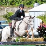 Horse Show Bermuda, December 13 2014-5