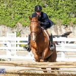 Horse Show Bermuda, December 13 2014-51