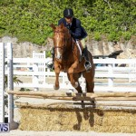 Horse Show Bermuda, December 13 2014-52