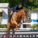 Horse Show Bermuda, December 13 2014-53
