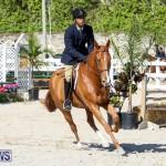 Horse Show Bermuda, December 13 2014-54