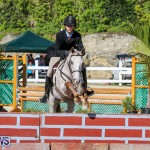 Horse Show Bermuda, December 13 2014-6