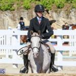 Horse Show Bermuda, December 13 2014-7