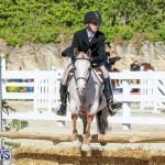 Horse Show Bermuda, December 13 2014-8