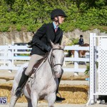 Horse Show Bermuda, December 13 2014-9