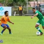 Shield Semi Final Devonshire Colts BAA Bermuda, December 27 2014-23
