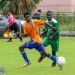 Shield Semi Final Devonshire Colts BAA Bermuda, December 27 2014-27