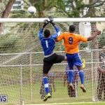 Shield Semi Final Devonshire Colts BAA Bermuda, December 27 2014-37