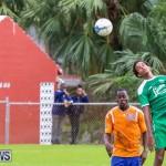 Shield Semi Final Devonshire Colts BAA Bermuda, December 27 2014-40