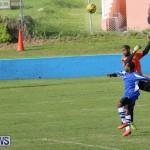 Shield Semi Final Football Bermuda, December 26 2014-82