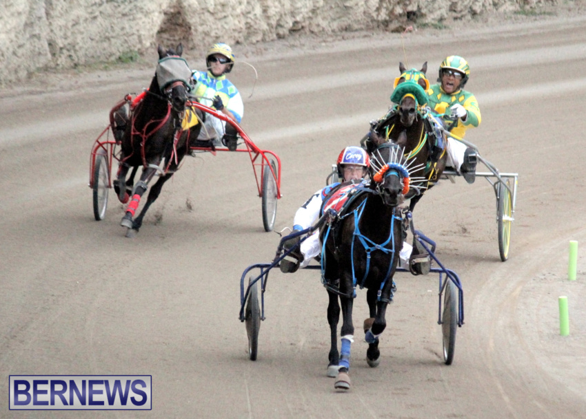 harness-racing-dec-2014-18