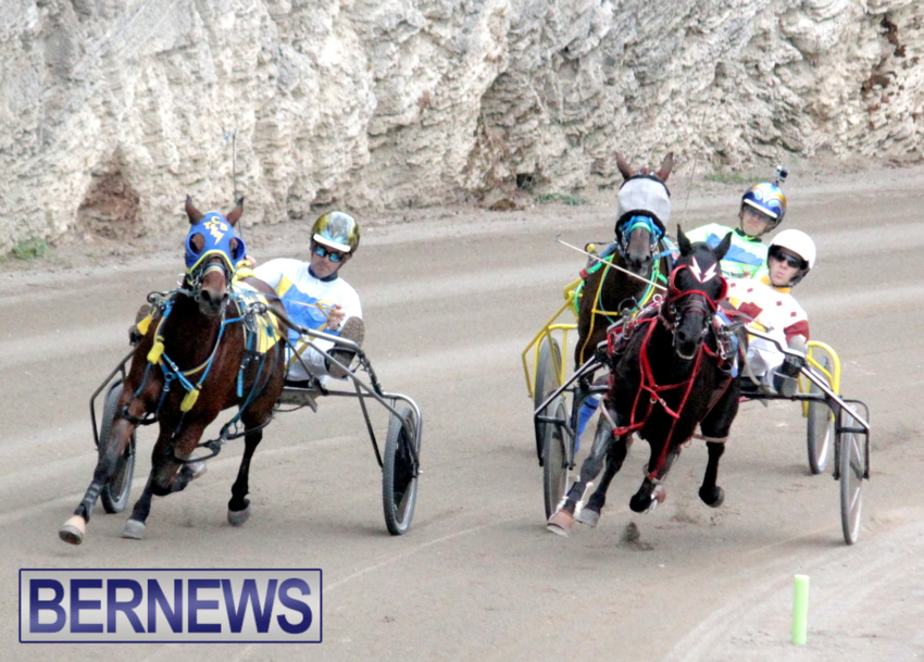 harness-racing-dec-2014-4