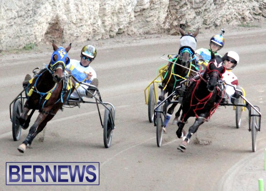 harness-racing-dec-2014-5