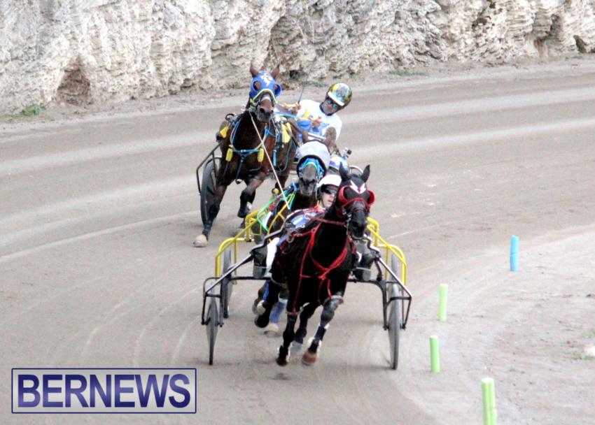 harness-racing-dec-2014-9