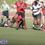 rugby-dec-2014-10