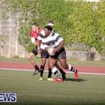 rugby-dec-2014-17