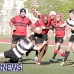 rugby-dec-2014-4