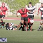 rugby-dec-2014-7