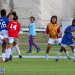 BSSF All-Star Football Bermuda, January 10 2015-59