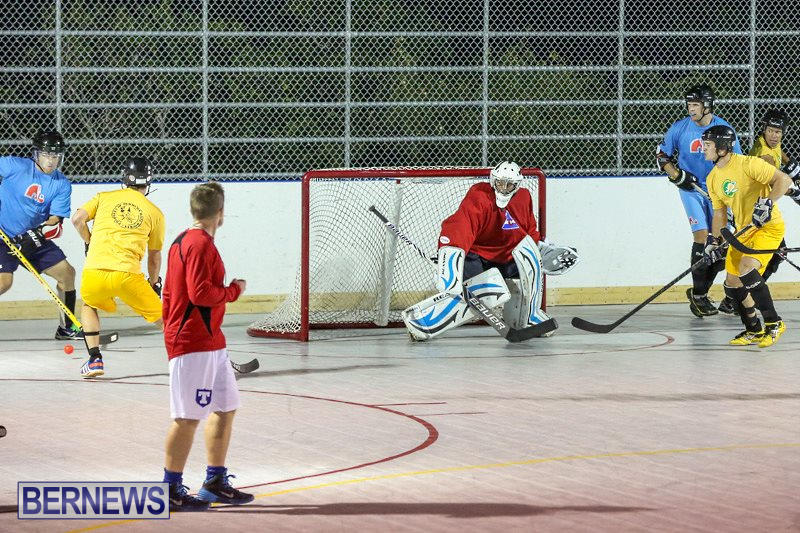 California-Golden-Seals-vs-Quebec-Nordiques-Bermuda-Ball-Hockey-January-21-2015-1