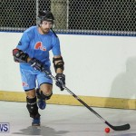California Golden Seals vs Quebec Nordiques Bermuda Ball Hockey, January 21 2015-10