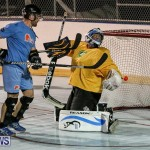 California Golden Seals vs Quebec Nordiques Bermuda Ball Hockey, January 21 2015-11