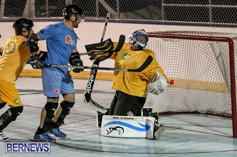 California-Golden-Seals-vs-Quebec-Nordiques-Bermuda-Ball-Hockey-January-21-2015-11