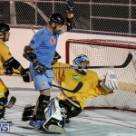 California Golden Seals vs Quebec Nordiques Bermuda Ball Hockey, January 21 2015-12