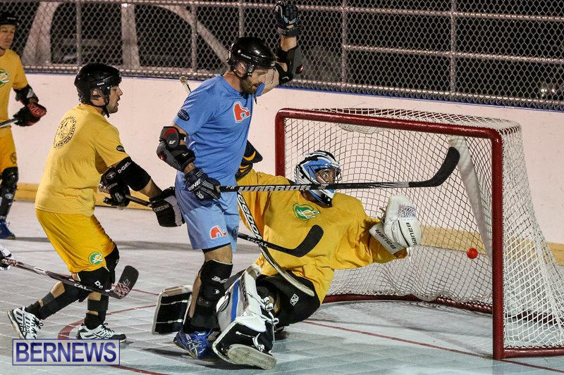 California-Golden-Seals-vs-Quebec-Nordiques-Bermuda-Ball-Hockey-January-21-2015-12