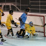 California Golden Seals vs Quebec Nordiques Bermuda Ball Hockey, January 21 2015-13