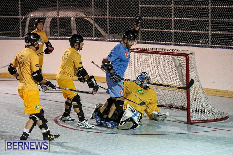California-Golden-Seals-vs-Quebec-Nordiques-Bermuda-Ball-Hockey-January-21-2015-13