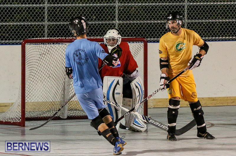 California-Golden-Seals-vs-Quebec-Nordiques-Bermuda-Ball-Hockey-January-21-2015-14