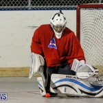 California Golden Seals vs Quebec Nordiques Bermuda Ball Hockey, January 21 2015-15