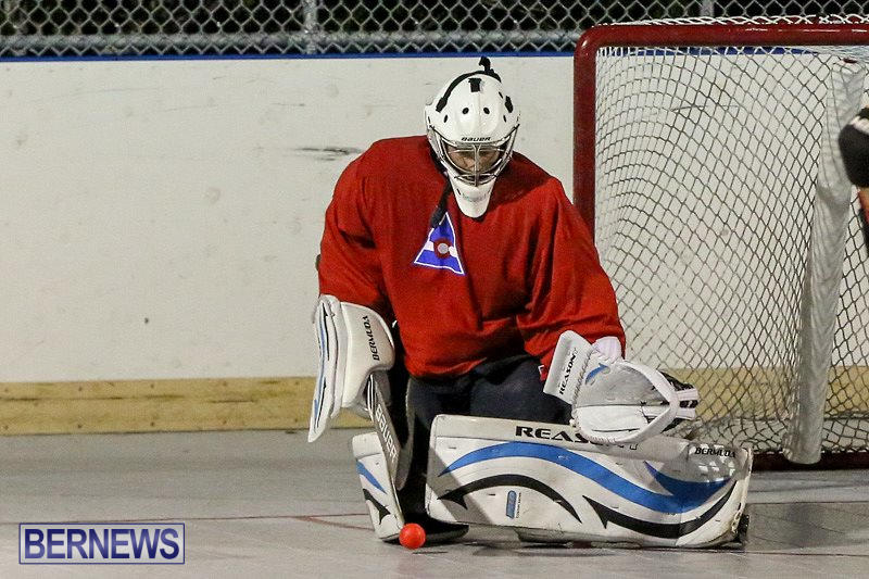 California-Golden-Seals-vs-Quebec-Nordiques-Bermuda-Ball-Hockey-January-21-2015-15