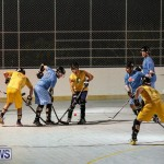California Golden Seals vs Quebec Nordiques Bermuda Ball Hockey, January 21 2015-16